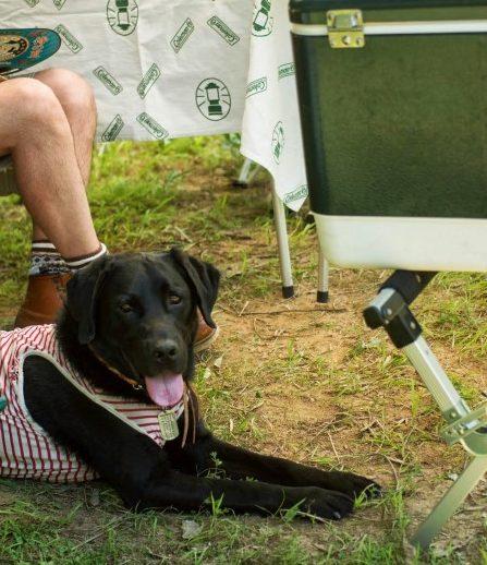 JAKE in camping