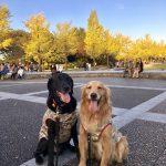 昭和記念公園にいったよ